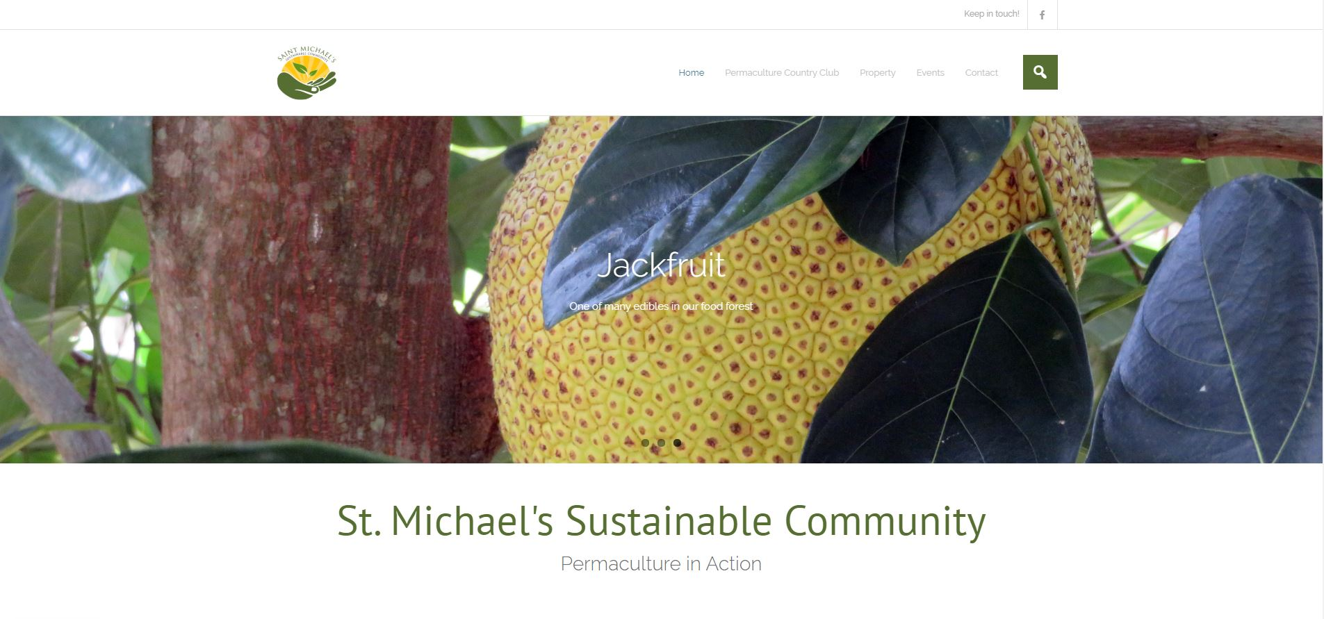 Header image from St. Michael's website